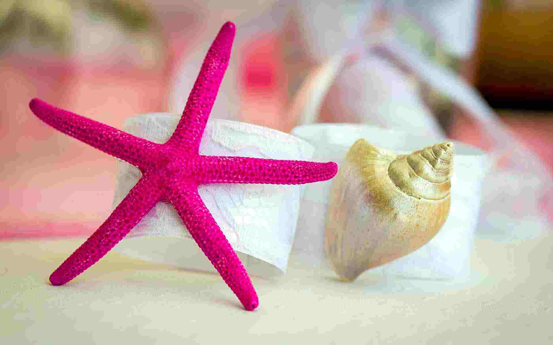 Bonding-Pads-On-The-Sea-Shells-And-Starfish-by-Diamond-Events-christening